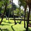 Тропический парк в Нуса дуа